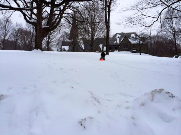 sled1